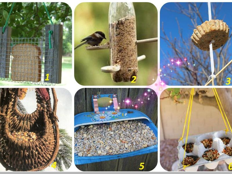 Кормушки для птиц своими руками из подручных материалов в детский сад