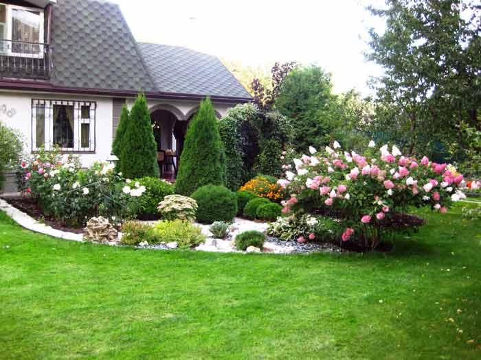 Фото газон своими руками на даче фото 95