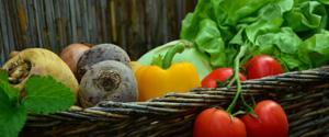 Севооборот овощных культур на дачном участке. Что после чего можно сажать?