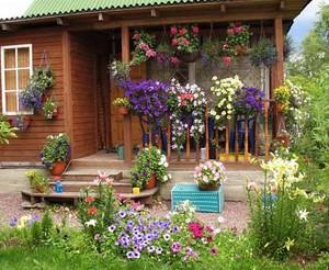 Оформление цветника во дворе