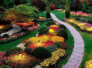 Оформление цветника вдоль дорожки