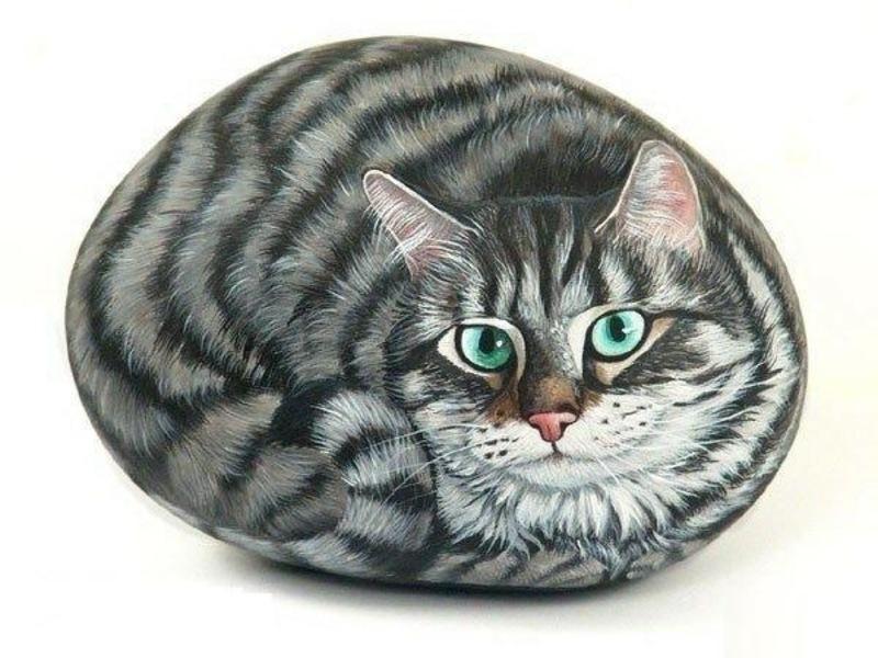 Камни роспись коты
