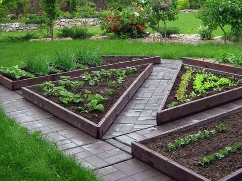 Декоративный огород в ландшафтном дизайне своими руками…