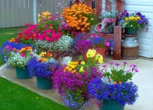 Как сделать огородное чучело своими руками: лучшие