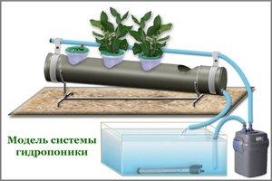 Оборудование для выращивания овощей гидропоникой фото и видео