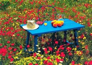 Цветущий газон как создать оригинальную лужайку