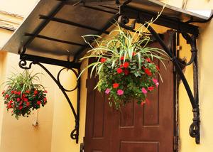 Как красиво посадить цветы на даче? Кашпо для цветов своими руками. Выращивание цветов в горшках и кашпо