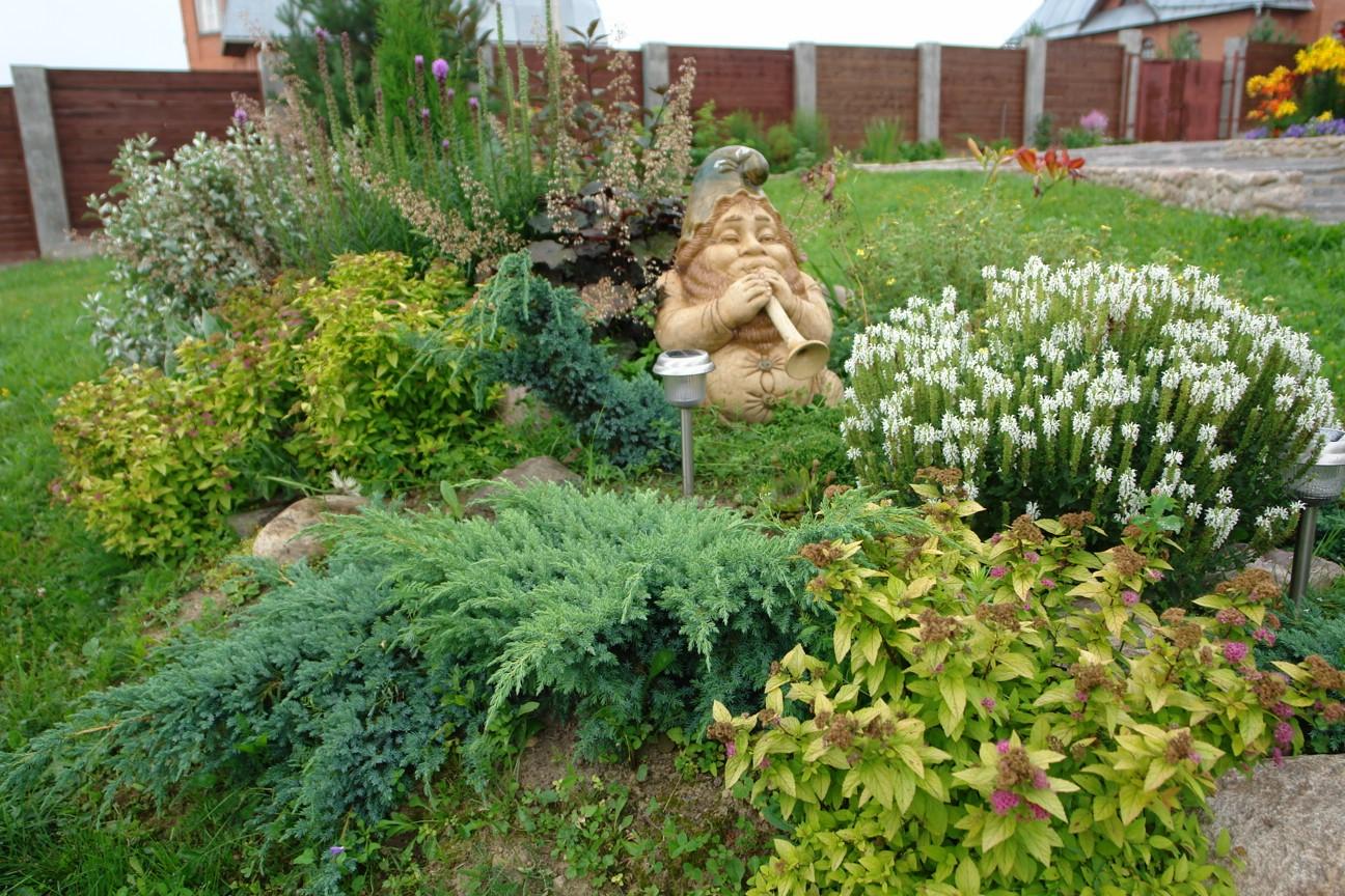 Каменистый сад фото схемы