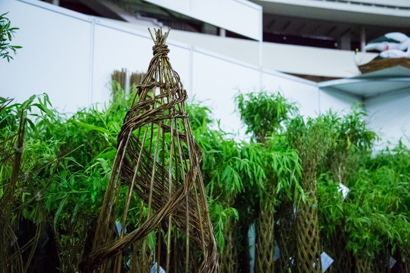 С 19 по 22 апреля 2018 года состоится выставка «Петербургская зеленая неделя»