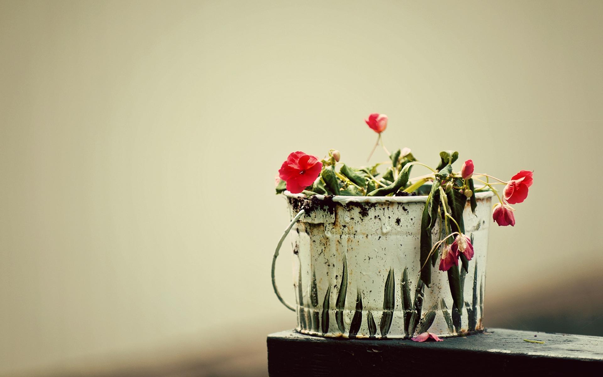 Букеты из цветов с конфетами своими руками фото
