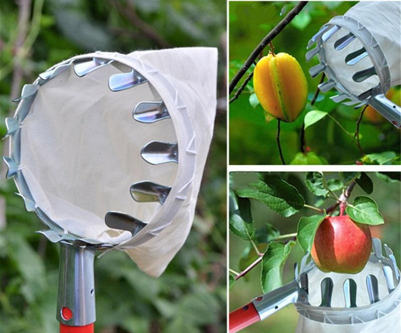 сачок для фруктов