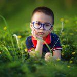 Влияние сада и огорода на психику: польза и вред, советы