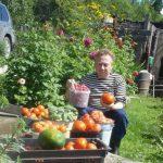 Чудо урожай на участке: фото, методы, описание, советы