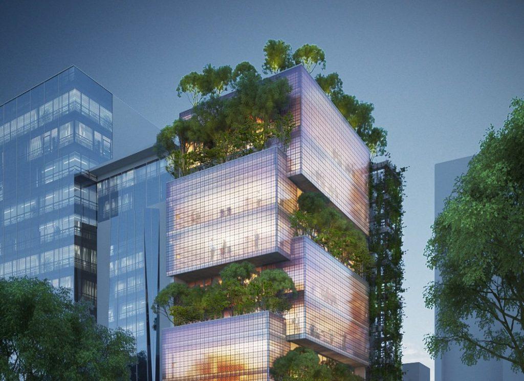 Зеленые города будущего