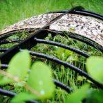 Клетки на могилах в Англии: фото, причины и история