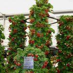 Тенденции в садоводстве: вертикальные грядки и орошение