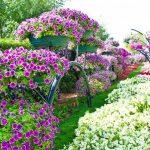 Садовая мода 2019: фото, тенденции, растения, цвета