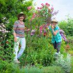 Ленивый сад: фото, правила, выбор растений, как ухаживать