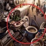 Коммуналки в Гонконге: фото, условия проживания, причины