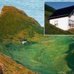 Необитаемый остров в Исландии: фото, география, особенности