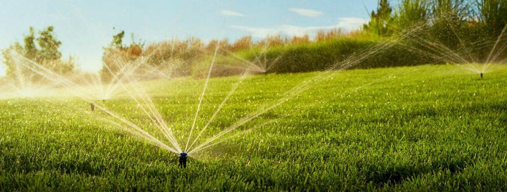 Когда дождя мало: выбираем садовый разбрызгиватель