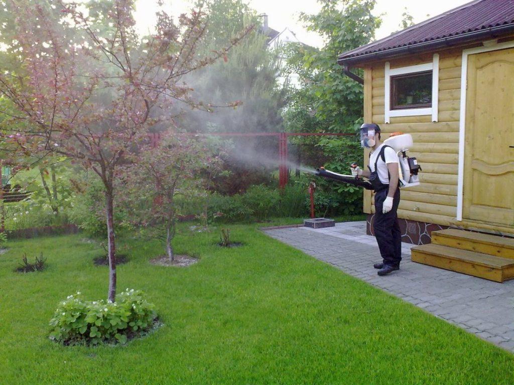 Как выбрать садовую технику для своего участка