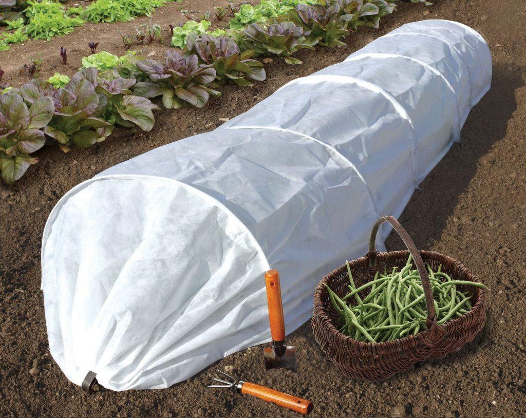 Как выбрать и использовать спанбонд для растений?